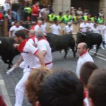 bulls and runners in pamplona