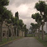 beautiful-path-at-otazu-winery-navarra