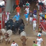 Bulls and runners in plaza de toros