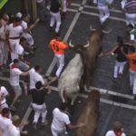 bulls-run-down-estafeta-san-fermin-pamplona