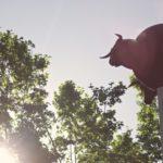 four-way-bulls-in-pamplona