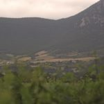 otazu-vineyards-navarra-wine