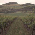 view-of-otazu-winery-vineyard