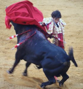 José Tomás with a bull rearing through a manoletina in Cordoba in 2009
