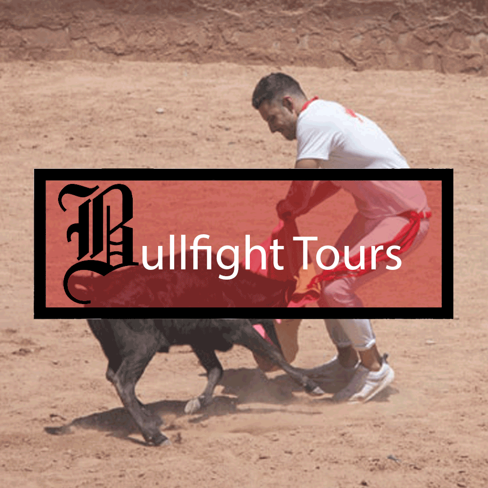 Bullfight Tours